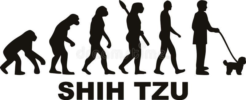Развитие Shih Tzu иллюстрация штока