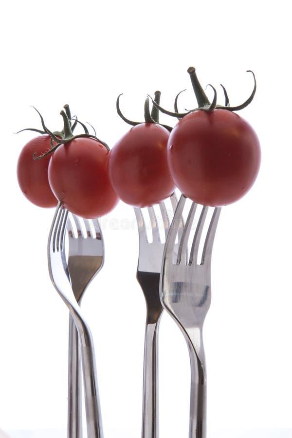 развлетвляют томаты стоковая фотография rf