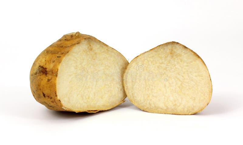 разделение корня jicama стоковое фото