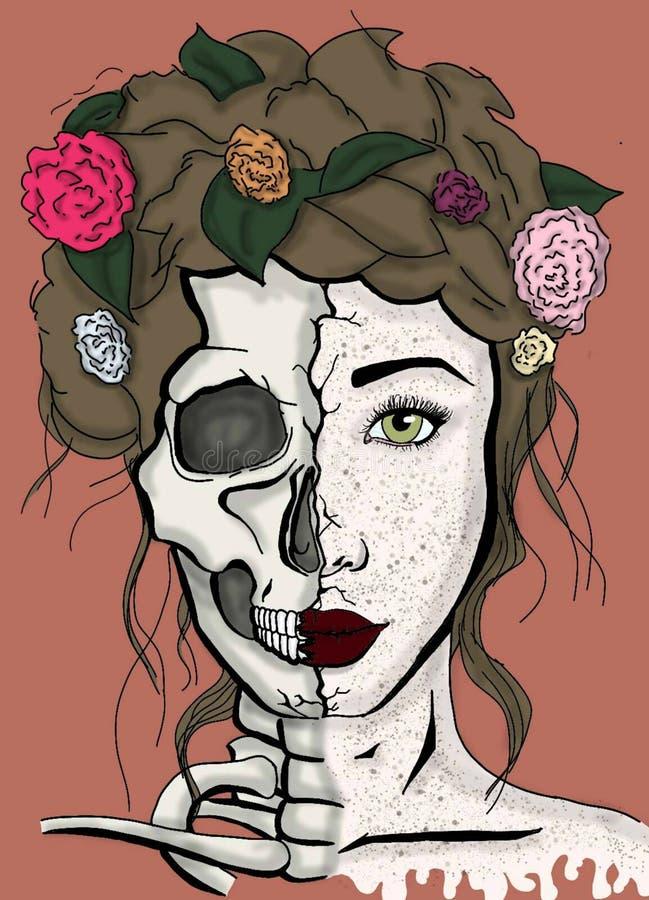 Разделенная сторона красоты бесплатная иллюстрация