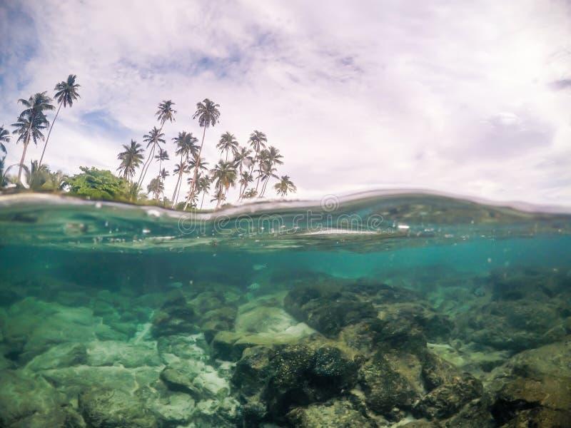 Разделенное поперечное сечение взгляда морской воды и пальм в Самоа, s стоковые изображения