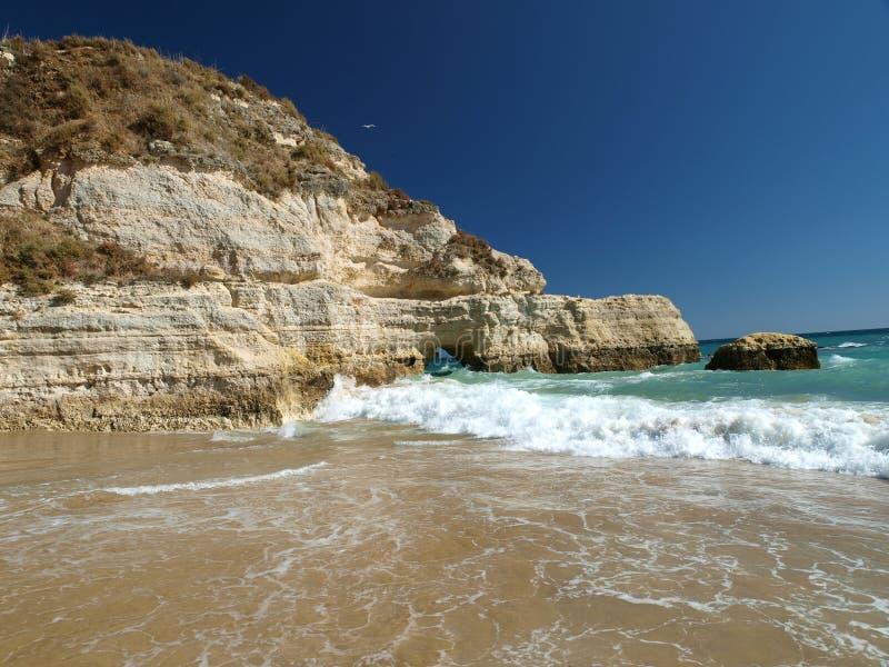 раздел rocha praia de пляжа идилличный стоковая фотография rf