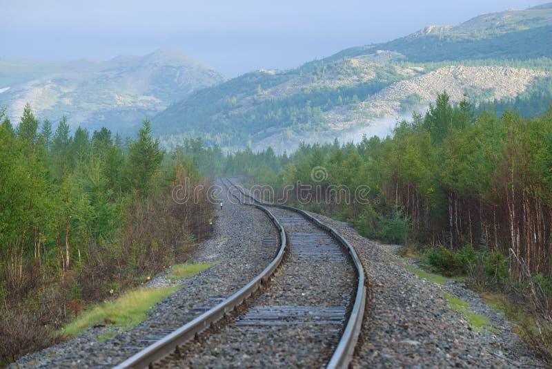 Раздел Vorkuta-Labytnangi железнодорожный, солнечное утро в августе Приполюсное Ural, Россия стоковые изображения rf