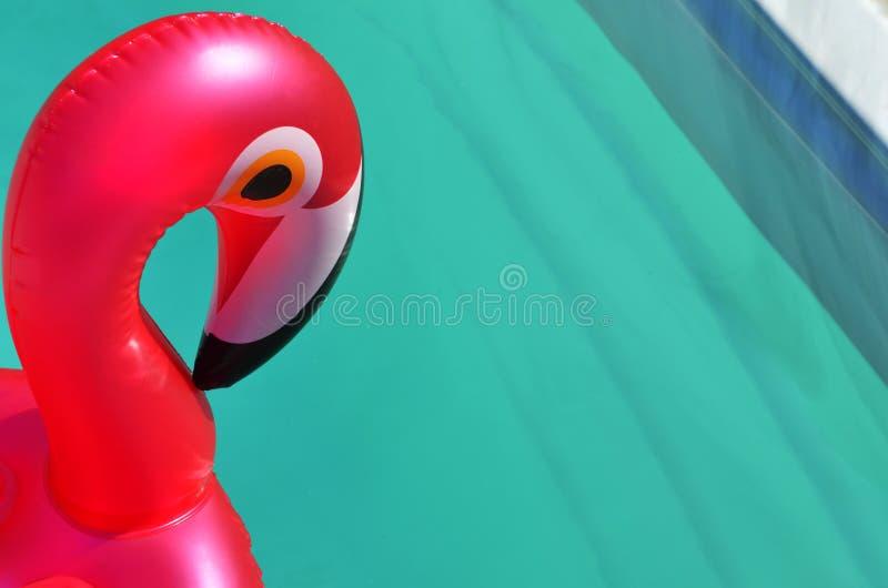 Раздувная игрушка в бассейне спа заплыва стоковое фото rf