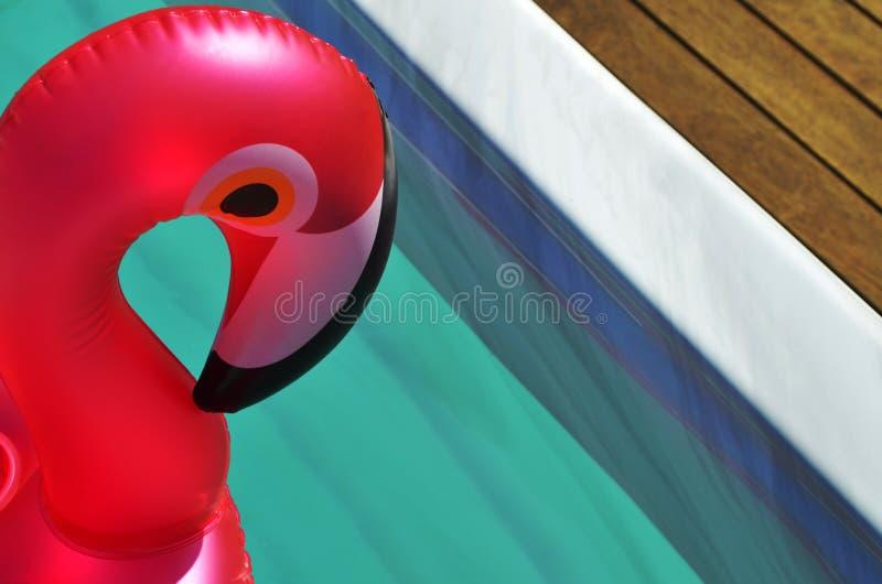 Раздувная игрушка в бассейне спа заплыва стоковая фотография rf