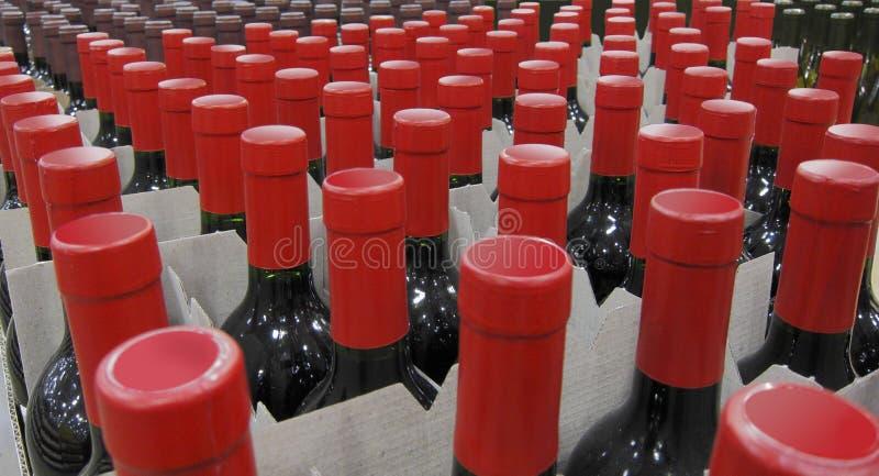 разливает красное вино по бутылкам стоковые фотографии rf