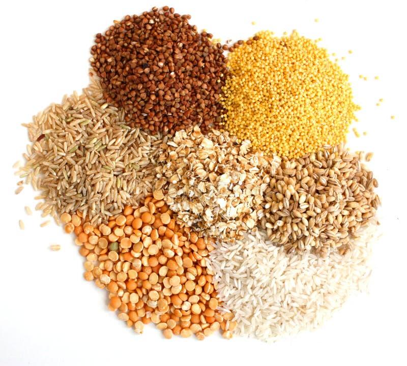 различные виды зерна стоковое изображение rf