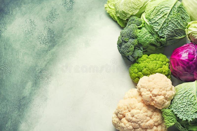 Различные виды капусты на предпосылке цвета стоковые фотографии rf