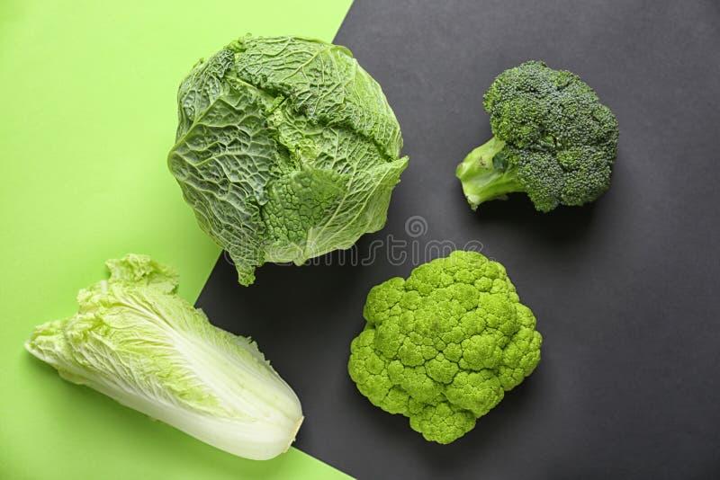 Различные виды капусты на предпосылке цвета стоковая фотография