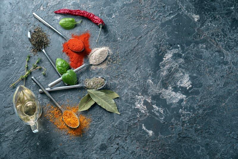 Различные виды специй с маслом на серой предпосылке стоковое фото