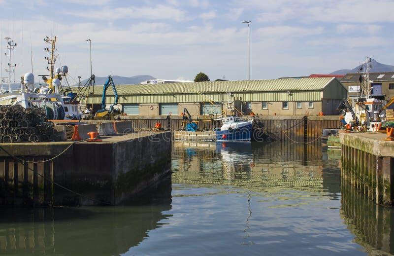 Различные красочные траулеры рыбной ловли связанные вверх в спокойных водах гавани Kilkeel в графстве вниз Северной Ирландии стоковое изображение