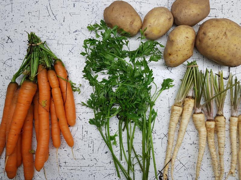 Различные овощи стоковые изображения