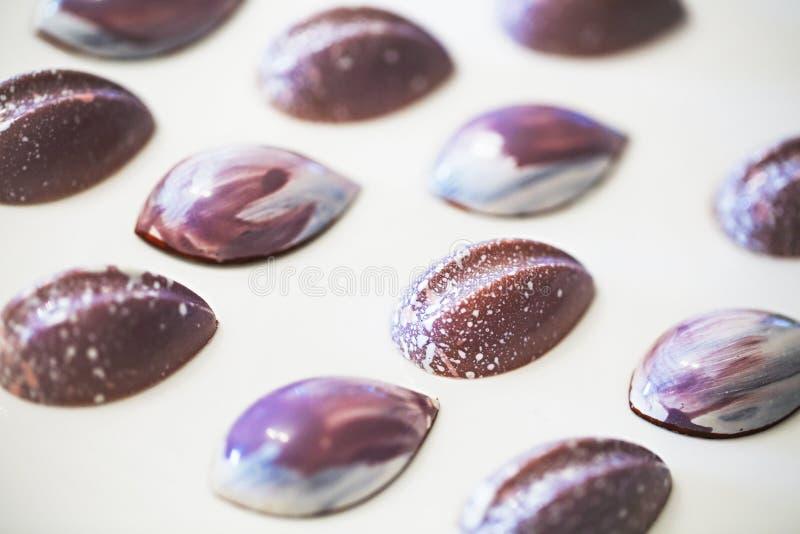 Различные помадки шоколада на белой предпосылке стоковое фото rf