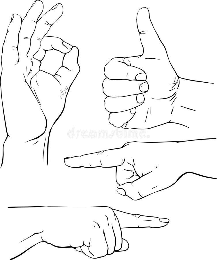Download Различные представления людских рук Иллюстрация вектора - иллюстрации насчитывающей кожа, ноготь: 18381138