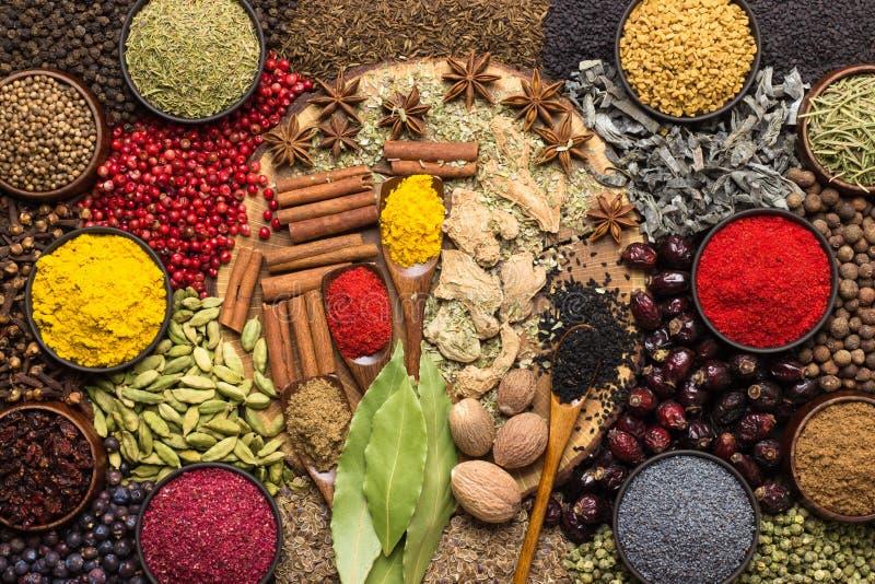Различные специи и condiments для варить еду Приправляя предпосылка, взгляд сверху стоковые изображения