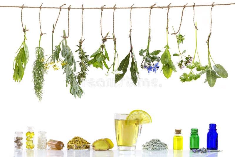 Различные ingrdients Подготавливать лекарственные растения для продвижения нетрадиционной медицины phytotherapyand healthbeauty н стоковые фотографии rf