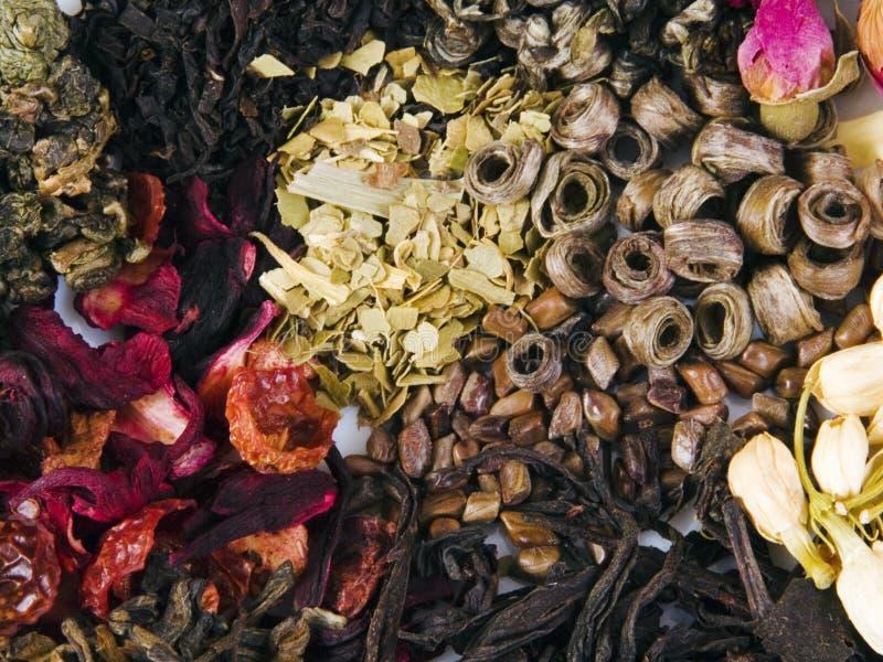 различный добросердечный чай стоковые фото