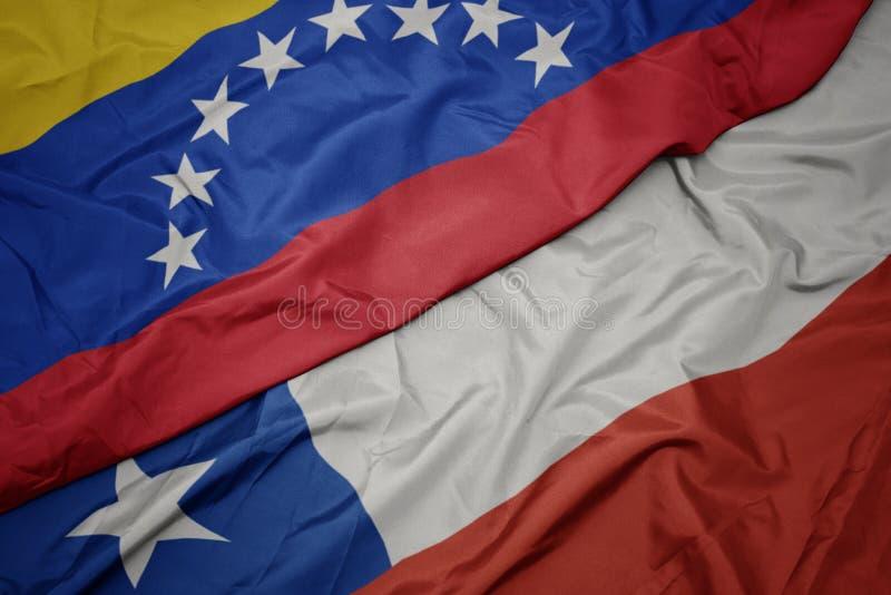 размахивая красочным флагом чаши и национальным флагом венезуэлы стоковые фотографии rf