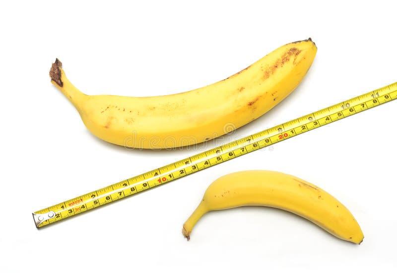 Размер имеет значение? стоковые фотографии rf