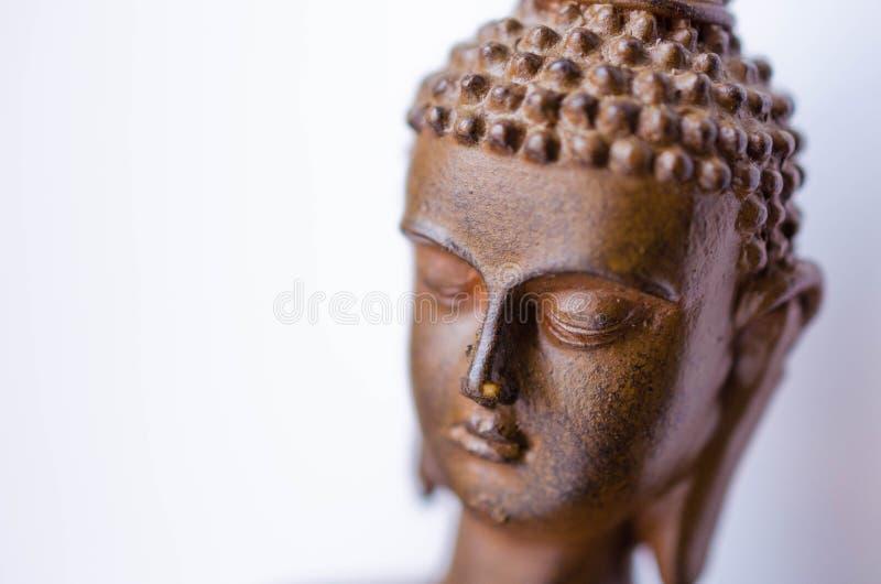 Размышлять голова Будды стоковые фотографии rf