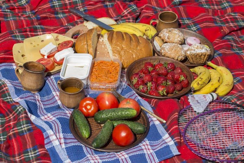 Разнообразие еды для пикника лежит на одеяле: красный томат, зеленый огурец, клубника, банан, морковь, сыр, хлеб, пирожные стоковое фото rf