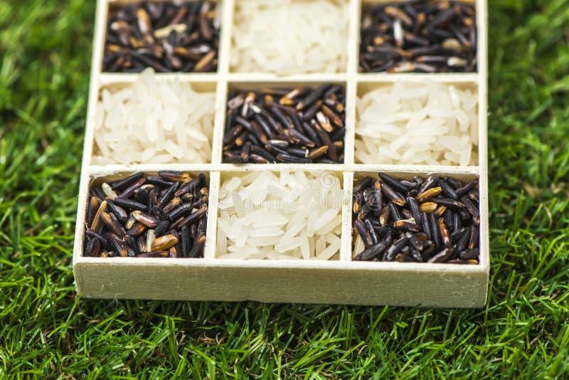 Разнообразие здоровых зерен и семена в клейковине деревянной коробки главным образом освобождают с рисом стоковое изображение