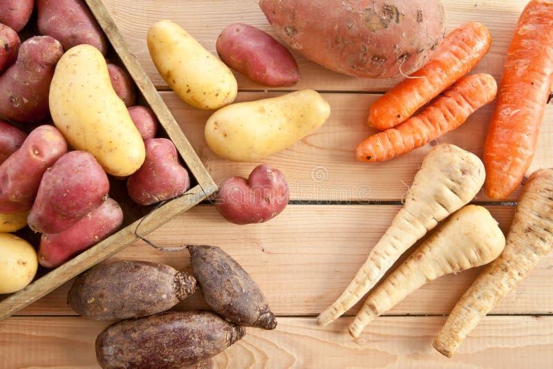 Разнообразие овощей зимы стоковые изображения rf