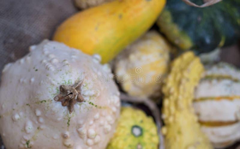 Разнообразие овощей на продаже в корзине на продовольственном рынке Eataly лидирующем в Турине, Италии стоковая фотография