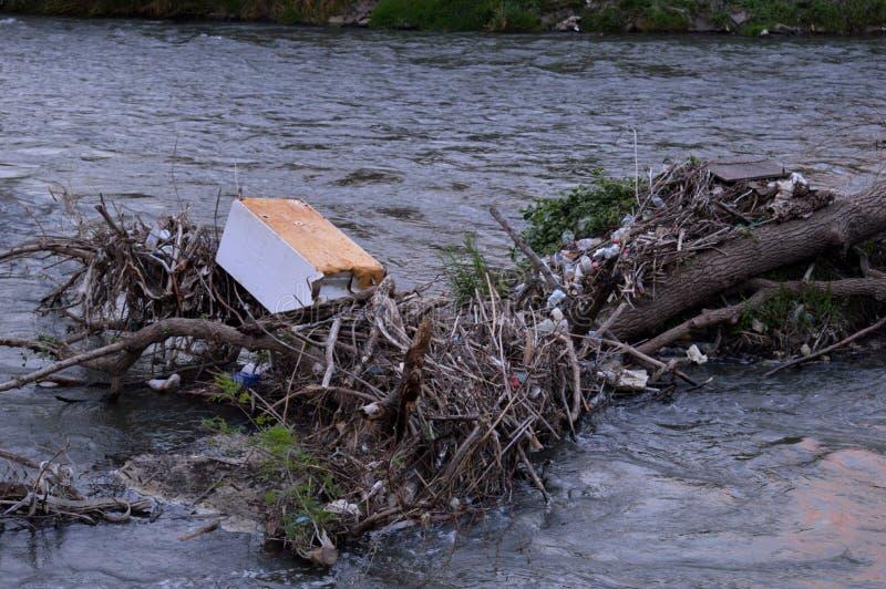 Разнообразие погани рекой стоковая фотография