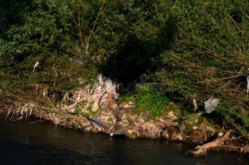 Разнообразие погани рекой стоковые изображения