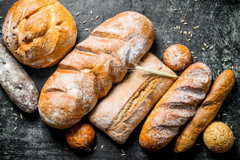 Разнообразие свежий испеченный хлеб стоковые фотографии rf