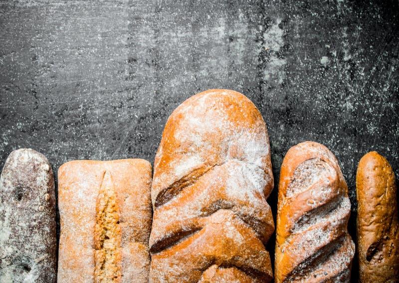 Разнообразие свежий испеченный хлеб стоковая фотография rf