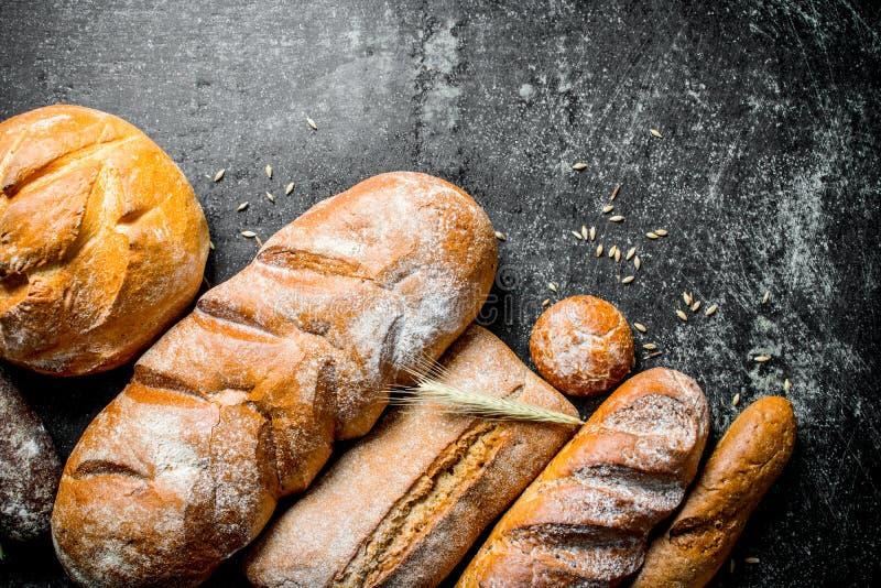 Разнообразие свежий испеченный хлеб стоковые изображения rf