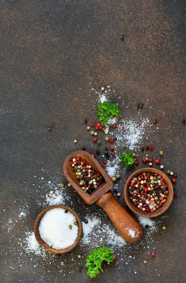 Разнообразие специи на конкретной предпосылке соль Перец стоковое изображение rf