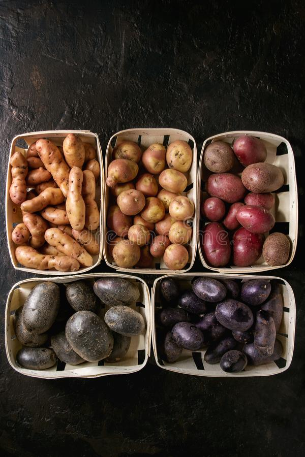 Разнообразие сырцовых картошек стоковая фотография