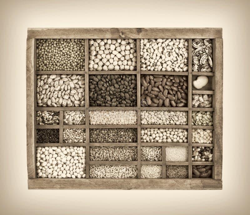 Разнообразие фасолей, зерен и семян в винтажной коробке typesetter стоковое изображение rf