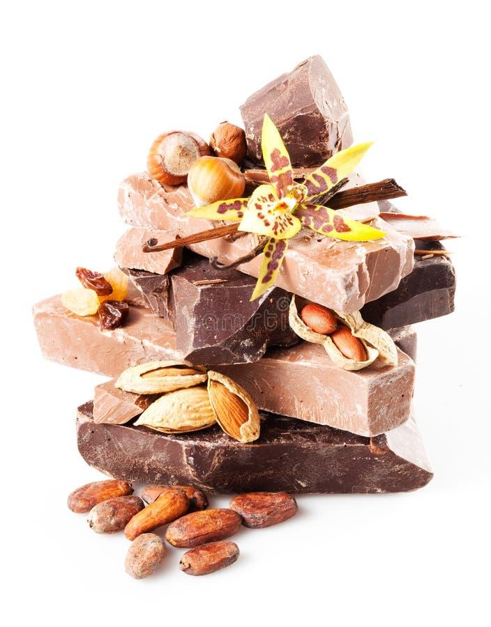 Разнообразие шоколада. части изолированные на белой предпосылке. конец стоковые фотографии rf