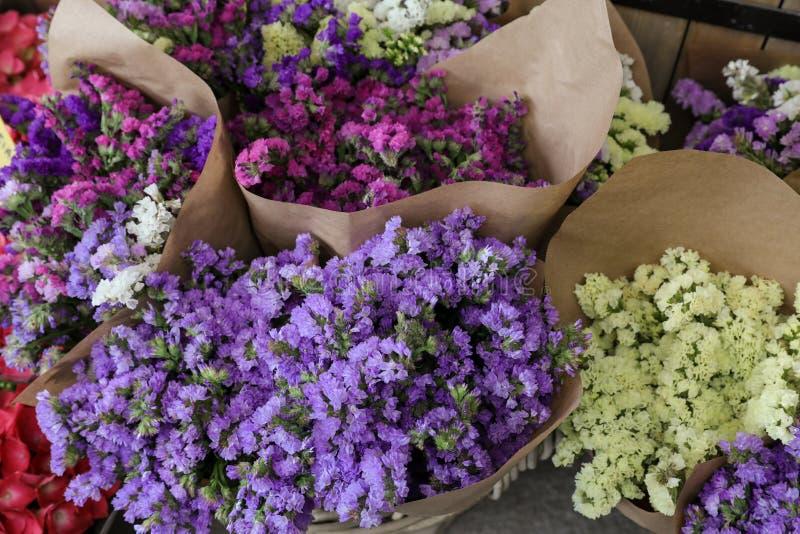 Разнообразие sinuatum limonium или statice salem цветет в голубом, сирень, фиолет, пинк, букеты цветов белизны цветков в греке стоковые фото