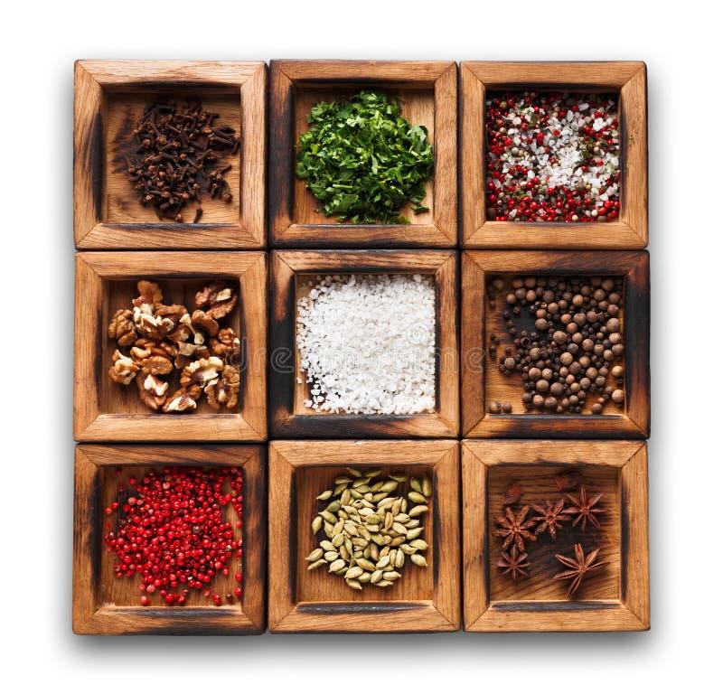 Разнообразные специи в деревянной изолированной коробке стоковое изображение rf