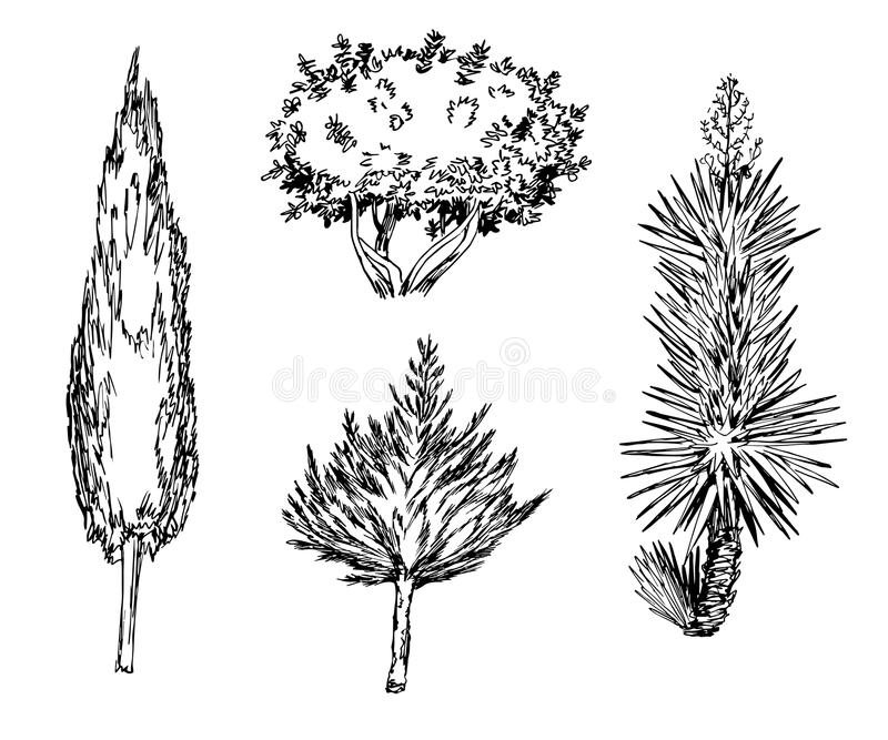 Разные виды нарисованные рукой дерева бесплатная иллюстрация