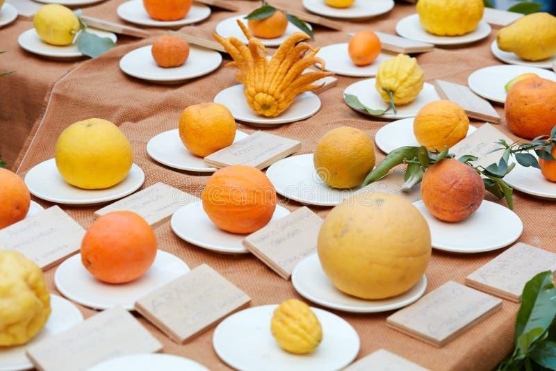 Разные виды цитрусовых фруктов во время весны справедливой стоковые изображения rf