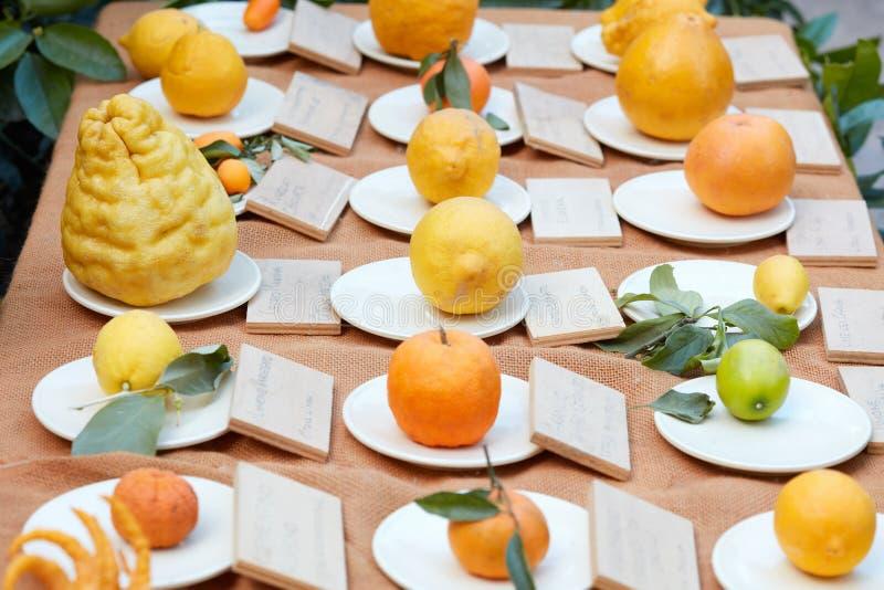 Разные виды цитрусовых фруктов на ярмарке, милане стоковое изображение