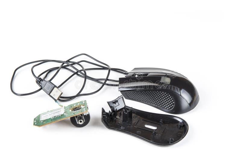 Разобранная мышь компьютера с кабелем USB на белизне стоковое фото