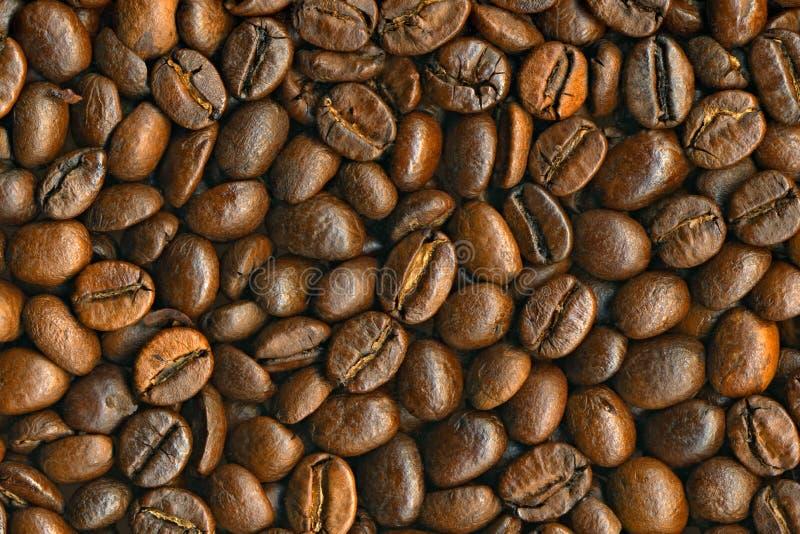 разрешение черного кофе фасолей предпосылки высокое стоковое изображение rf