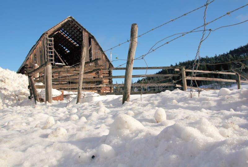 Разрушанный и покинутый амбар в зиме стоковые фото