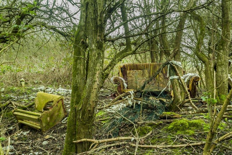 Разрушенная природа стоковое изображение rf