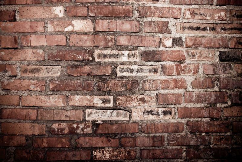 разрушенная стена стоковые изображения