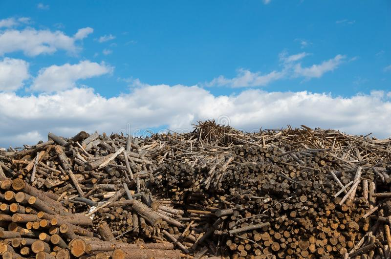 Разрушительная природа стоковые фотографии rf