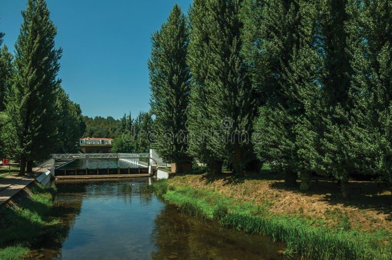 Разъедините реку среди деревьев в Portagem стоковые фотографии rf