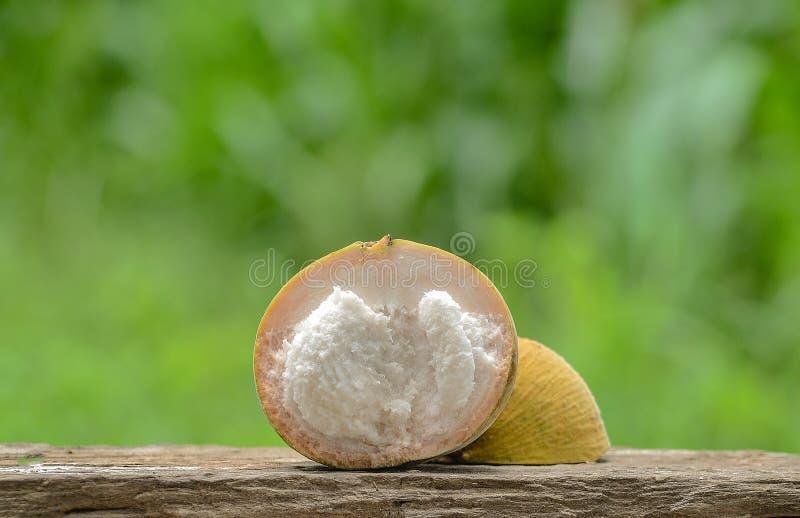 Разделение плодоовощ Santol стоковое изображение